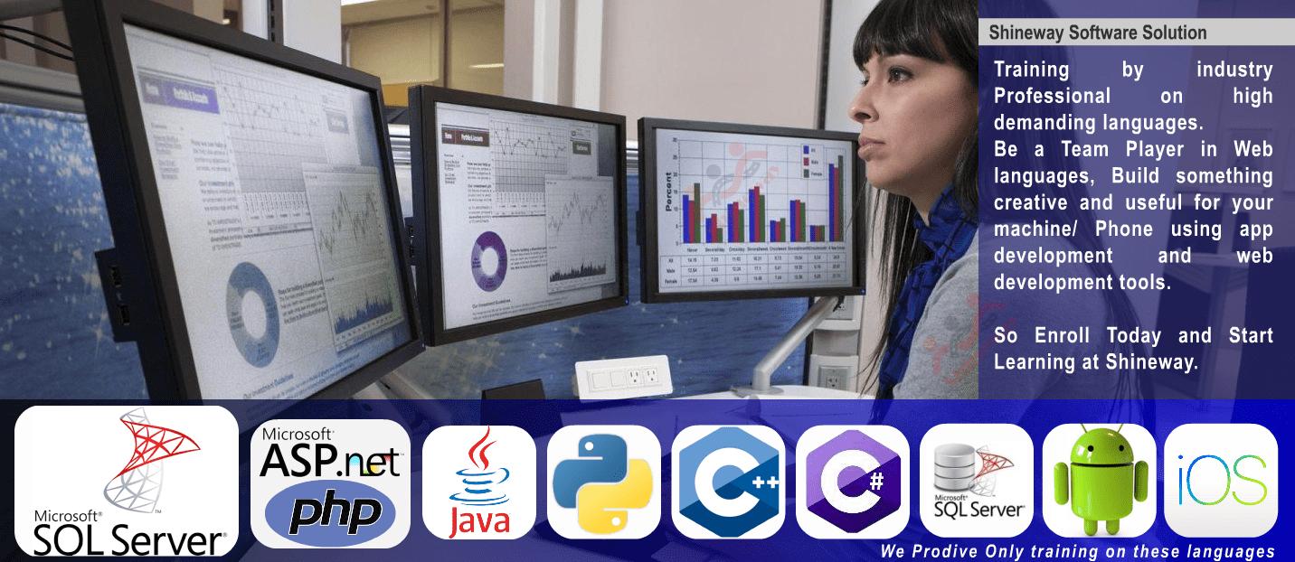 Programming Leader